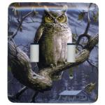 Scenic Light Switch Plates