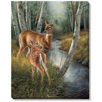Birch Creek - Doe and Fawn Wrapped Canvas Art
