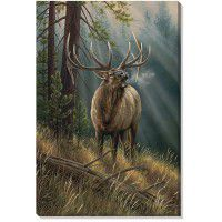 Calling All Challengers - Elk Wrapped Canvas Art