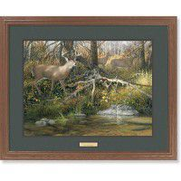 When Seasons Change – Whitetail Deer Framed Art Print
