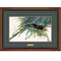Sunbathing-Black Bear Framed Print