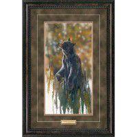 Up Wind-Black Bear Framed Print