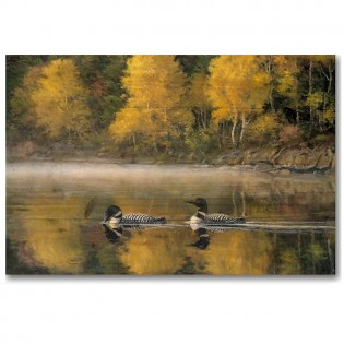 Autumn Morning Loons Wall Art