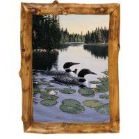Enchanted Passage Loon Framed Print