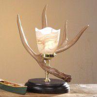 Whitetail Antler Night Lamp