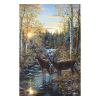 Whitetail Deer Lighted Canvas 24 x 16
