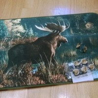 Back Bay Moose Memory Foam Rug