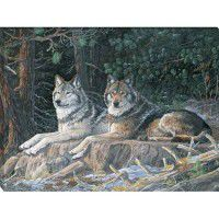 Leaders of the Pack - Wolf Wrapped Canvas