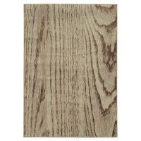 Wood Grain Area Rugs