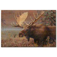 Chocolate Moose Wall Art