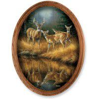 Whitetail Reflections Framed Oval Canvas