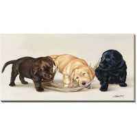 Bad Boys - Lab Puppies Wrapped Canvas Art