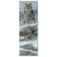 Gray Wolf Wrapped Canvas Art