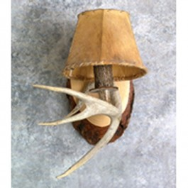 Whitetail Antler Sconce-Single