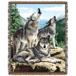 Grey Song Wolf Afghan