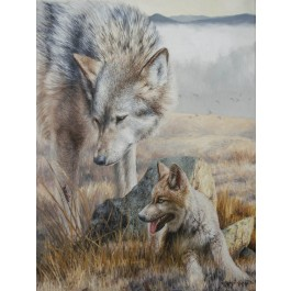 Zoology Lesson Canvas Print Signed and Embellished